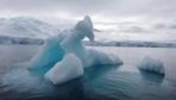 erderwärmung: riesiger eisberg bricht in der antarktis von gletscher ab