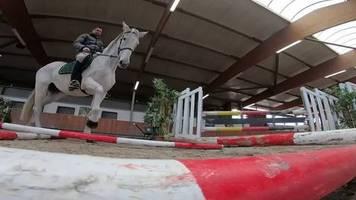 Video: Gelassenheitsprüfung für Pferde im Kölner Karneval