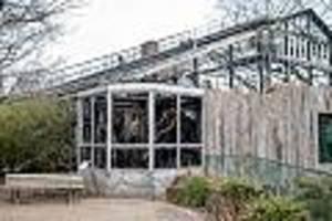 Feuer-Inferno im Krefelder Zoo - Mehr Tiere gestorben als bisher bekannt