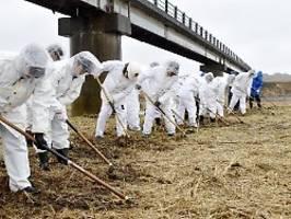 engpässe wegen virus befürchtet: gehen fukushima die schutzanzüge aus?