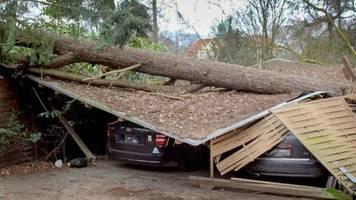 Schäden: Sturm «Sabine» kostet Versicherer Hunderte Millionen Euro