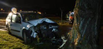 mehlsecken lu: autofahrer (18) kracht frontal in baum