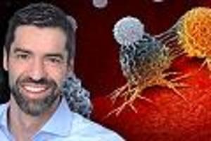 Forscher stellen Immunsystem scharf - Krebs-Meilenstein: Immuntherapie kann Tumore besiegen - und ist wirksamer als Chemo