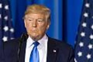 """Bei Wahlkampfveranstaltung - Donald Trump nennt Brad Pitt einen """"Schlaumeier"""" und wettert gegen """"Oscar""""-Gewinner"""