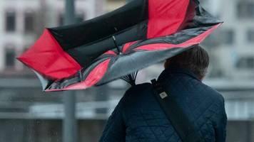 Versicherer: Wintersturm Sabine kostet Sparkassen-Versicherung 70 Millionen Euro