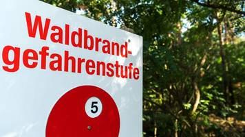 waldbrandgefahr in berlin steigt