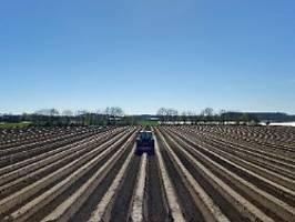 Brachliegende Landwirtschaft: Klöckner will Asylbewerber einsetzen