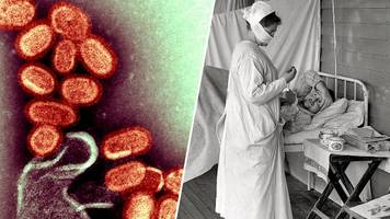 Spanische Grippe: Wie Forscher dem Erreger auf die Spur kamen
