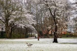 Wetter: Der Winter meldet sich zurück: Leichter Schneefall