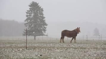 hochdruckgebiet keywan bringt frost und schnee