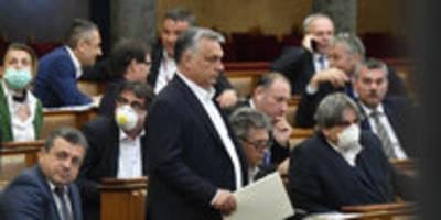 Ermächtigungsgesetz in Ungarn: Orbáns Corona-Coup