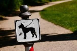 Tiere: Hunde müssen in der freien Landschaft an die Leine