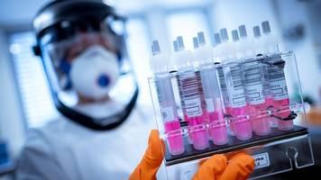 ein bis zwei jahre - experten: nach corona-infektion vermutlich zunächst immun