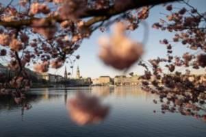 Wetter: Freundliches Frühlingswetter am Wochenende im Norden
