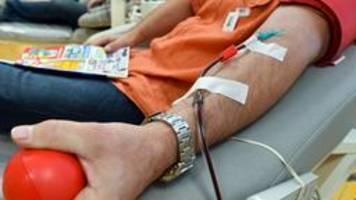 fdp fordert zulassung homosexueller männer zu blutspende