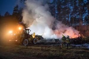 großeinsatz in brandenburg: feuer bedroht 25 hektar wald