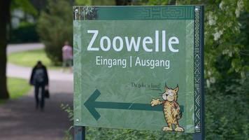 kein stillstand in zoos trotz sperrung