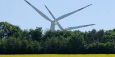Mehr Grün, weniger CO2 in Europa: Green Deal zu schwarzen Bedingungen