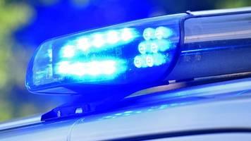 Brandenburg: Polizei-Suche nach Raubkatze endet kurios