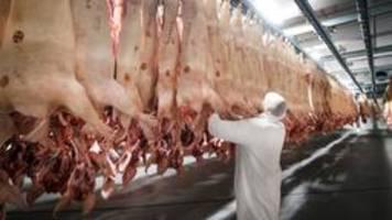 Kabinett: strenge Regeln und Verbote für Fleischbranche