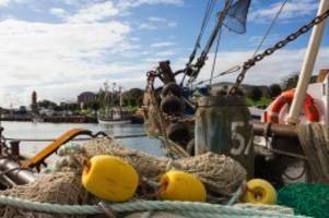 Nordsee: Urlaub in Büsum: Das Tor zum Weltnaturerbe