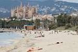 Reisen in Corona-Zeiten - Spanien will Quarantäne für Einreisende zum 1. Juli aufheben - erster Strand-Test auf Mallorca