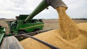 Streit über Hongkong: China stoppt Kauf von US-Agrarprodukten