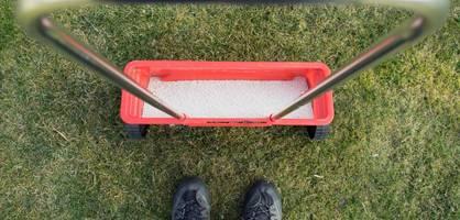 Rasen düngen - Das müssen Sie beachten