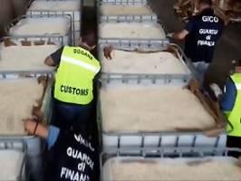 is und mafia involviert?: 14 tonnen dschihadisten-droge entdeckt