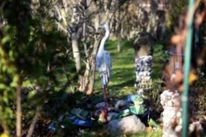 Mehr Kleingärten: Berliner Kleingärtner sollen Parzellen teilen