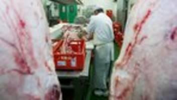 Covid-19: Mehrere Infizierte in österreichischen Fleischbetrieben