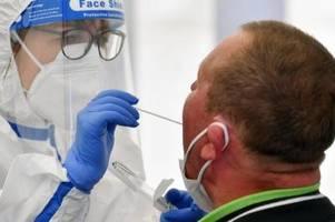 239 registrierte corona-neuinfektionen in deutschland