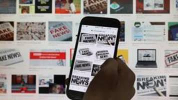 kampf gegen desinformation: wo es bei der bundesregierung hakt