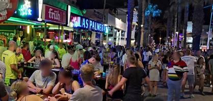 Polizei auf Mallorca will Stammbäume am Ballermann prüfen