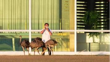 Corona-Infektion: Bolsonaro hat genug von der schrecklichen Quarantäne – und macht neuen Covid-19-Test