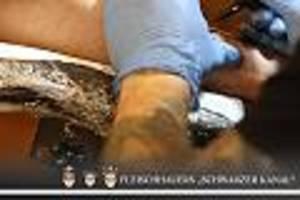 die focus-kolumne von jan fleischhauer - bloß niemanden verletzen: jetzt auch rastazöpfe und tattoos auf dem verbotsindex