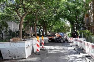 Augsburger deckt massiven Baumfrevel auf - mit Folgen für die Verantwortlichen