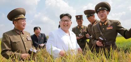 """""""baby kim"""" und sein regime"""