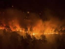 Hitze, Feuer und giftiger Rauch: Russlands Wälder gehen in Flammen auf