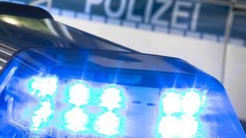 polizei stoppt mit riesiger palme beladenen pkw in saarlouis