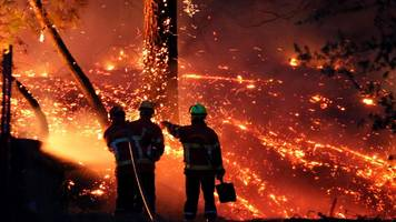 waldbrand in südfrankreich: tausende menschen in sicherheit gebracht