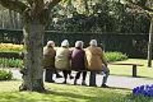 altersbezüge steigern - extrazahlungen nutzen: so können sie ihre gesetzliche rente aufbessern