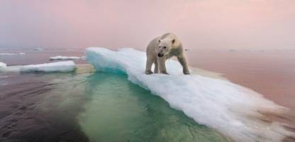 klima: was der eisverlust in der arktis für uns bedeutet