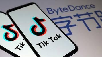 Soziale Netzwerke: Twitter und TikTok haben offenbar über Fusion gesprochen