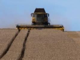 Landwirtschaft: Bauern sollten nicht für Spekulanten ackern müssen