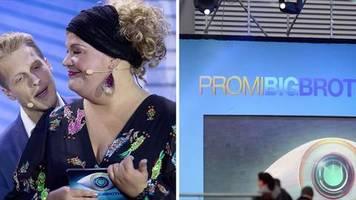 Reality-TV: Promi Big Brother: Aufreger und Fakten zur TV-Show