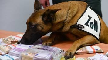 Spürhund erschnüffelt am Flughafen fast 250 000 Euro Bargeld