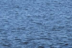 umwelt: wie das wasser im biesdorfer see sauberer werden könnte