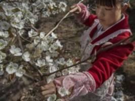 nachhaltigkeit: biologische vielfalt ist gut fürs geschäft