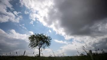 wind und regen lösen sommerliches wetter in hessen ab